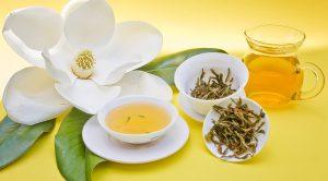 Metabolizmayı Hızlandıran Isırgan Çayı